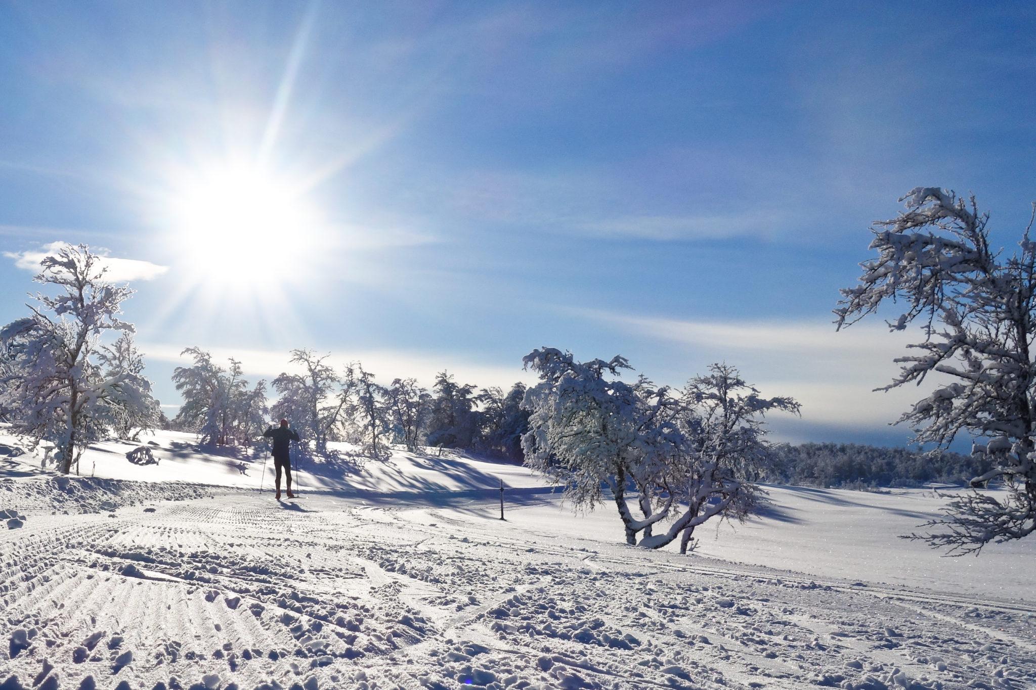 Mittåkläppspåret i vacker vinterskrud